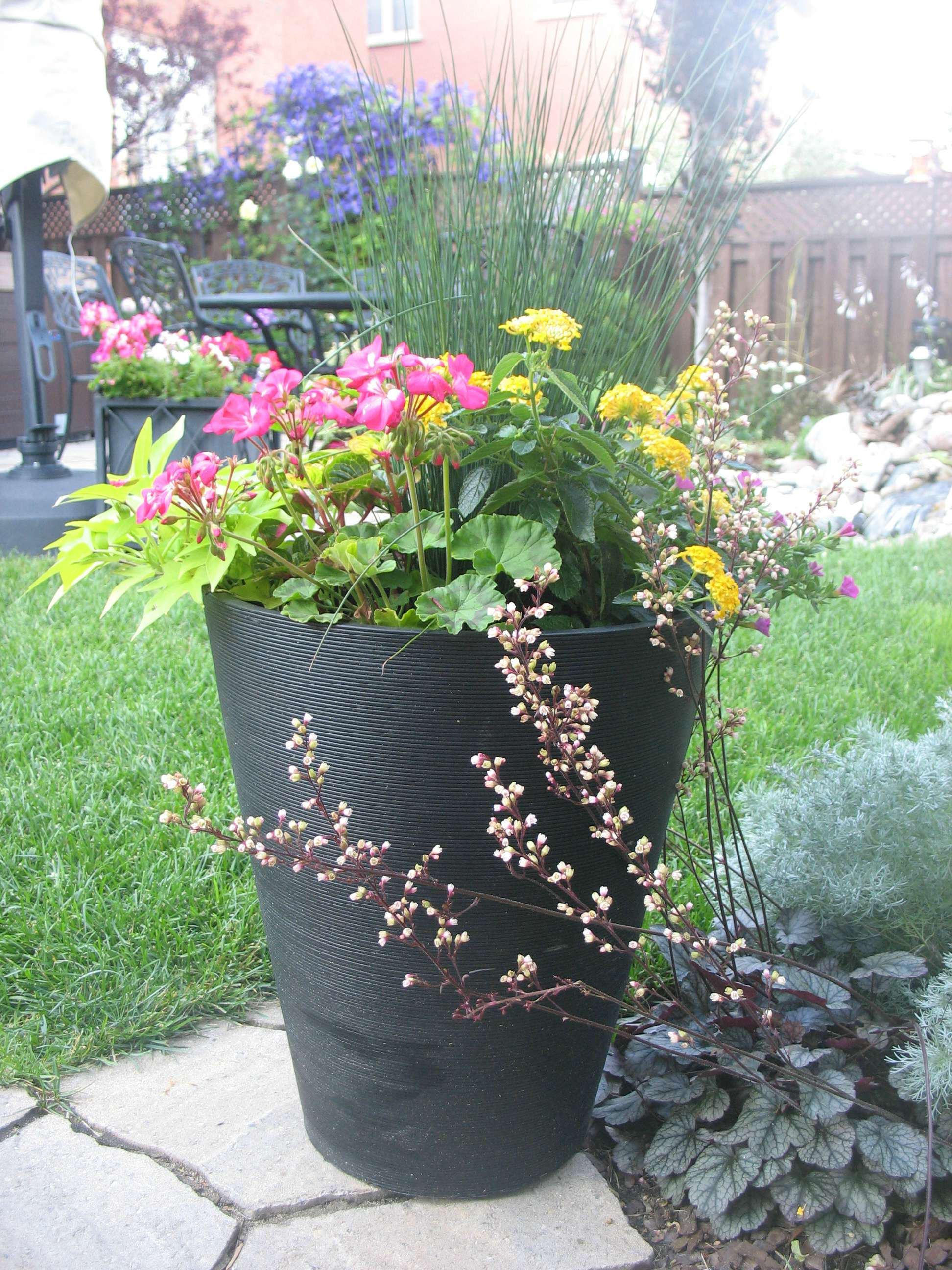 how to plant summer outdoor containers